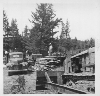 1-Portable-Sawmilling